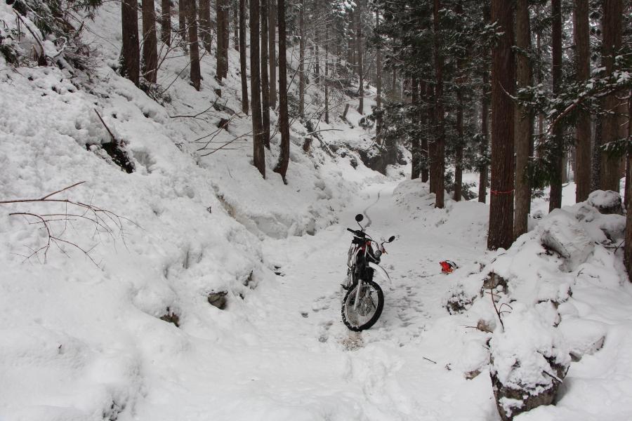 雪に覆われた林道五波袖ヶ谷線