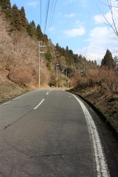 福井県道16号