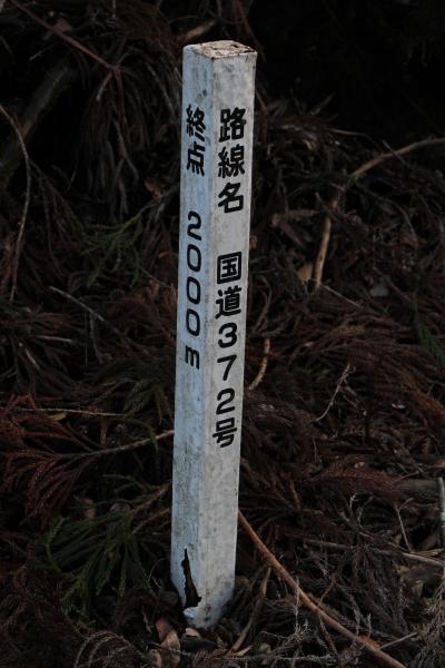 国道372号の木杭