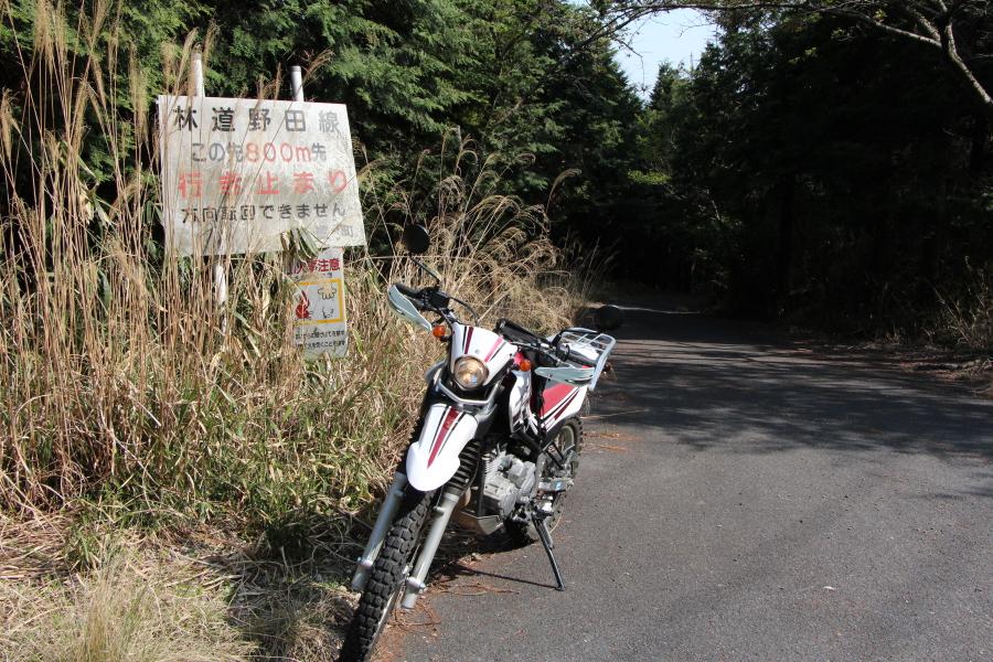 林道野田線