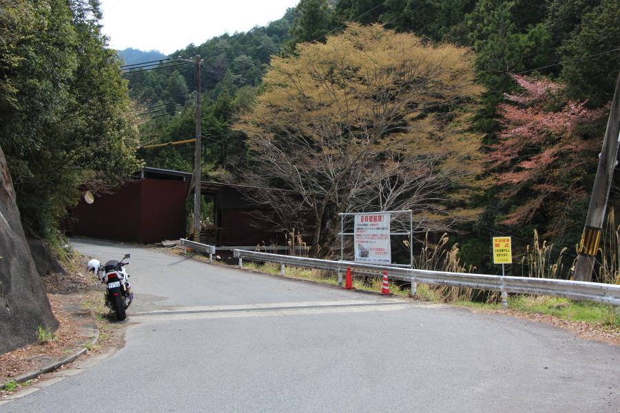サンギリ林道