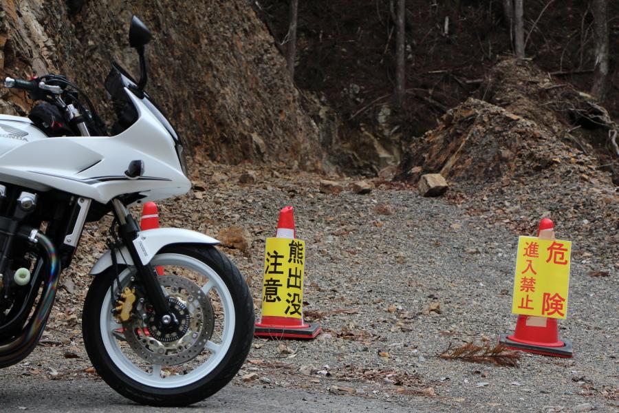 サンギリ峠と白川峠の登山道