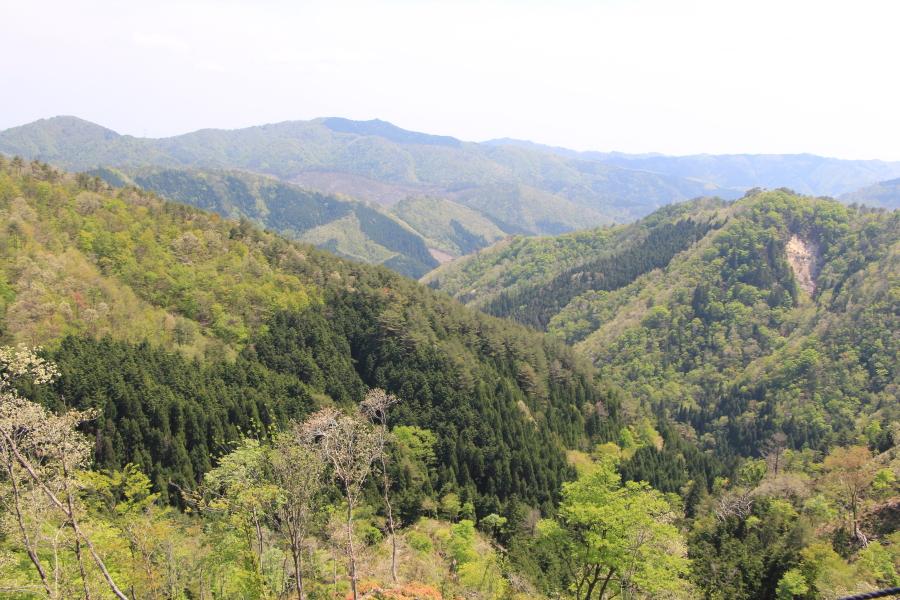 堀越峠の眺望