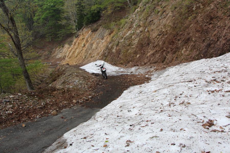 林道上根来線の残雪