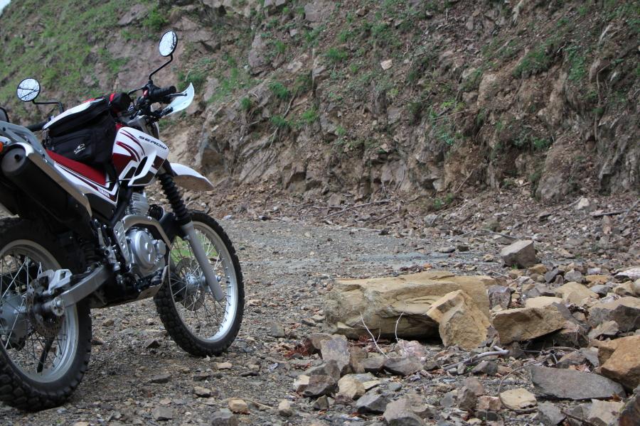 林道上根来線の落石