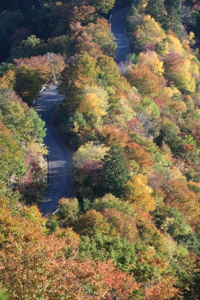 秋のおにゅう峠
