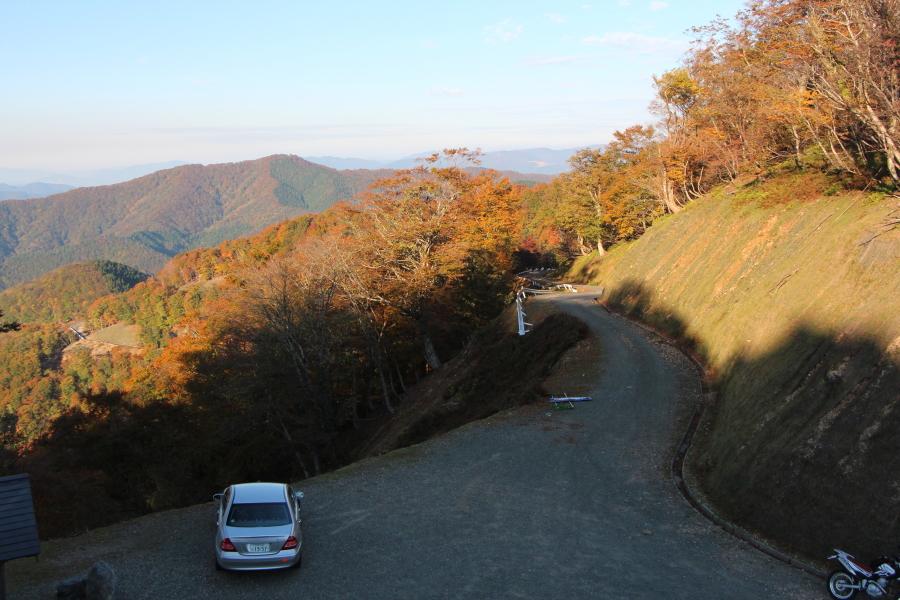 秋の福井県側の林道上根来線
