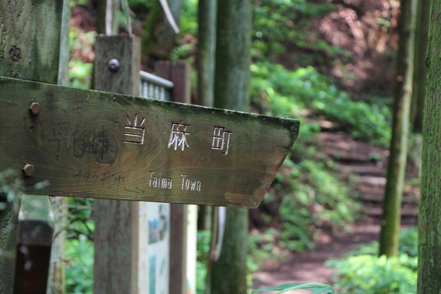 岩橋山から葛城山方向