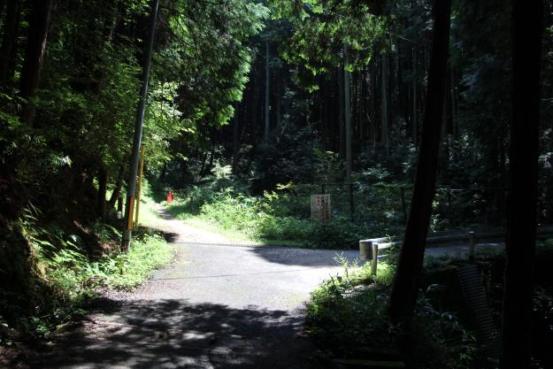 平石峠への分岐点