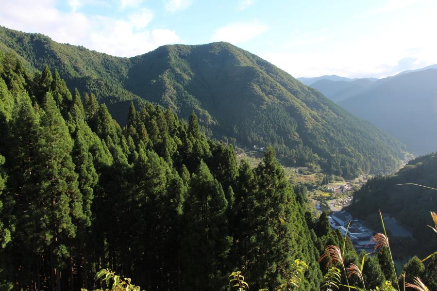 西播磨の山