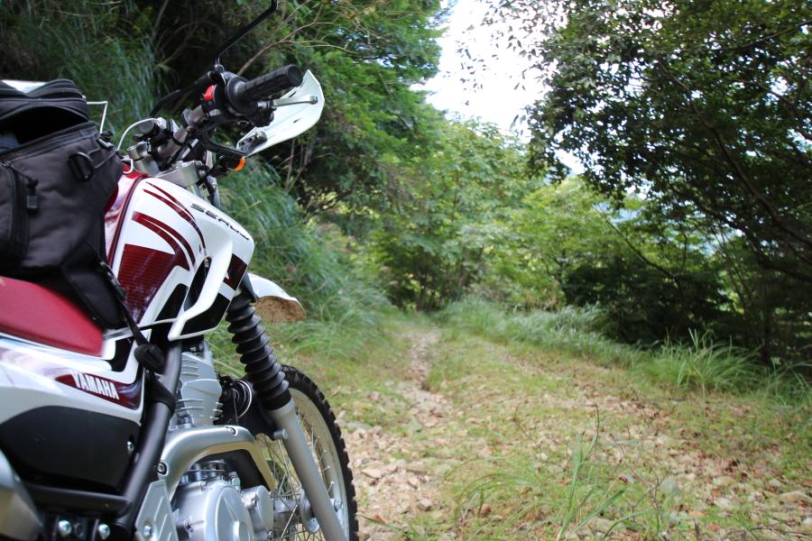 カンカケ三室林道の千種町側