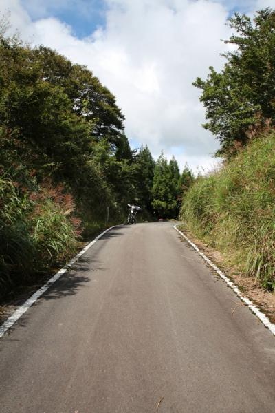 鳥取県側から見た大通峠