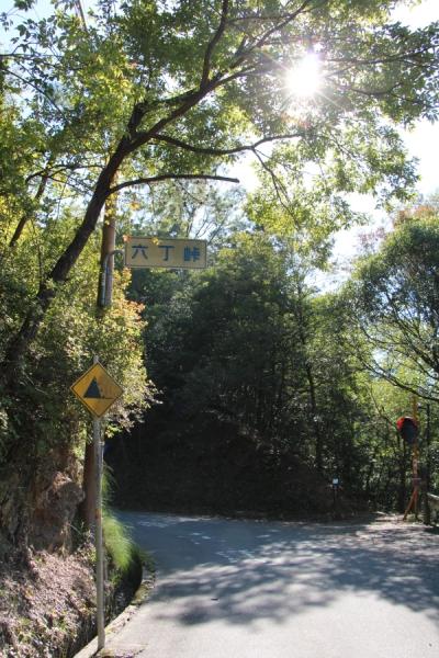 水尾側から見た六丁峠