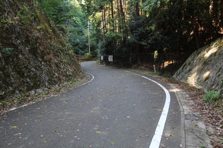 北方の清滝側の路面