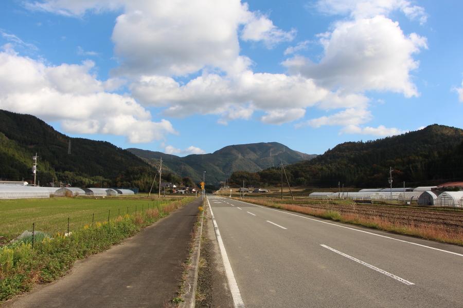 京都府道50号から見た愛宕山