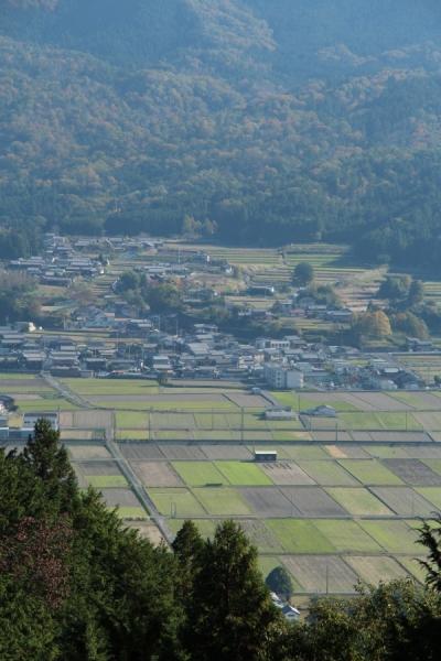 集落と区画整理された田んぼ