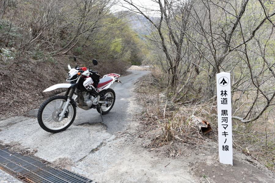 林道 黒河マキノ線
