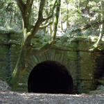長野峠/もののけの叫びが暗闇の廃隧道に響き渡る