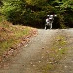 星峠/一人、京都の秋の気配を求めて贅沢ツーリング