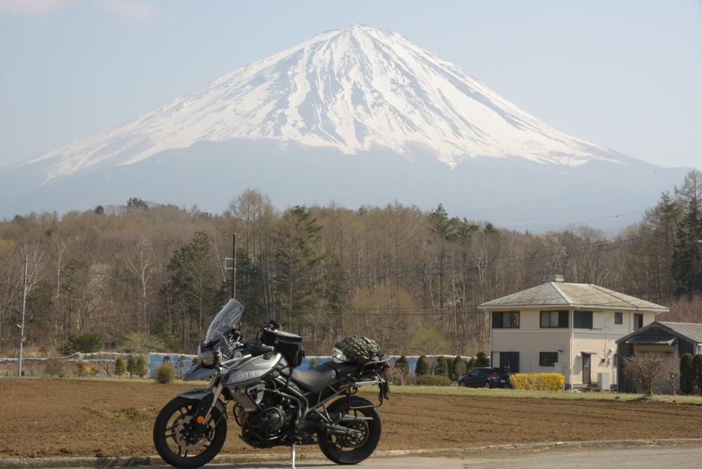 タイガー800と富士山